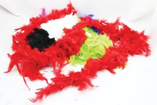 Picture of FEATHERY BOA