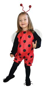 Picture of LITTLE LADYBUG
