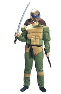 Picture of TURTLE FIGHTER