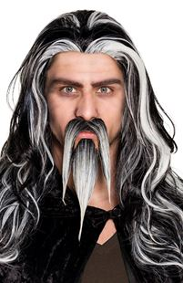 Picture of MUSTACHE AND BEARD OF A WIZARD