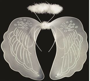 Picture of White wings for angel with oreol.