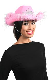 Picture of COWBOY HAT WITH TIARA AND FEATHERS