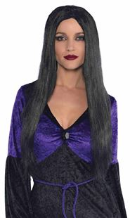 Picture of Wig Witch Black One Size